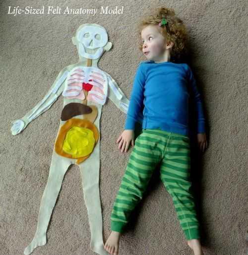 Vücudumuz ile İlgili Tüm Etkinlikler