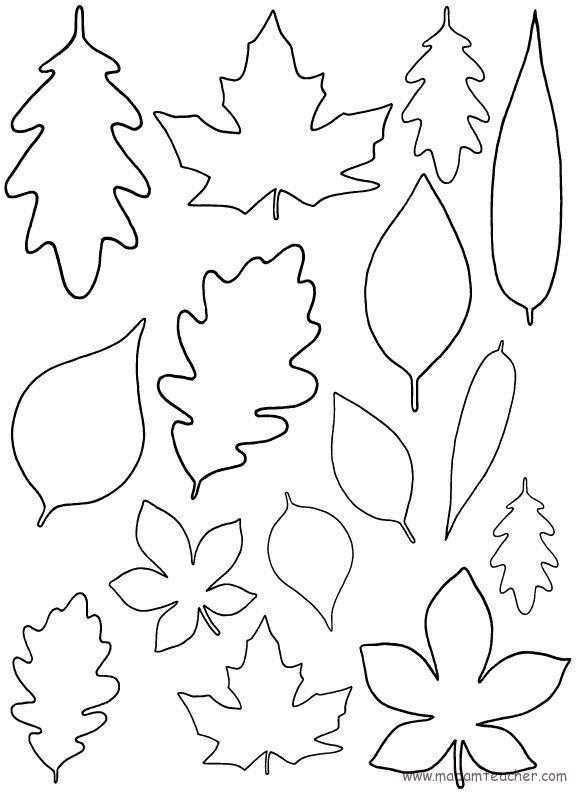 Sonbahar Etkinliği 11 Okul öncesi Etkinlik Faliyetleri