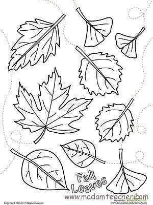 Sonbahar Etkinliği 16 Okul öncesi Etkinlik Faliyetleri