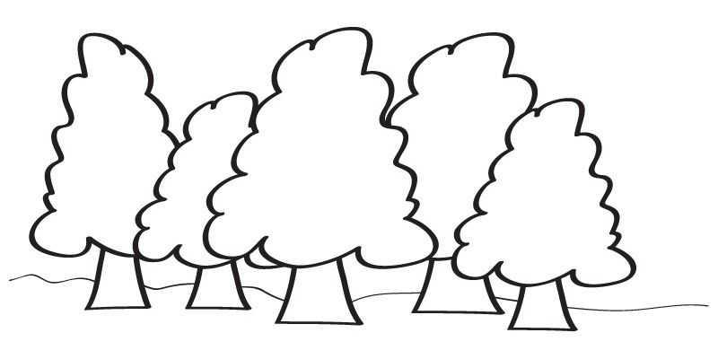Orman Haftasi Etkinlikleri 8 Okul Oncesi Etkinlik Faliyetleri