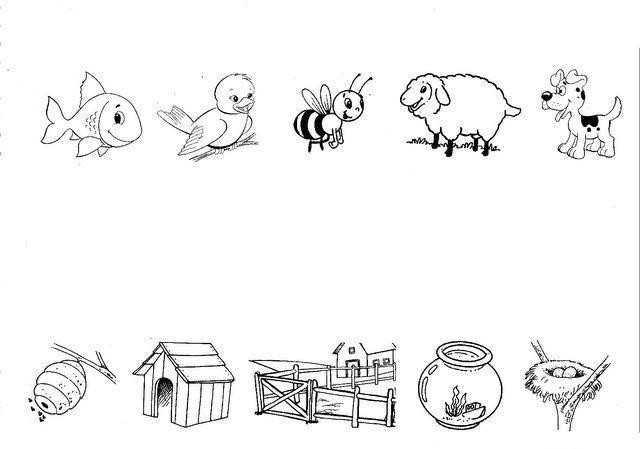 Hayvanlari Yasadiklari Yere Gore Eslestirme Calismasi Okul