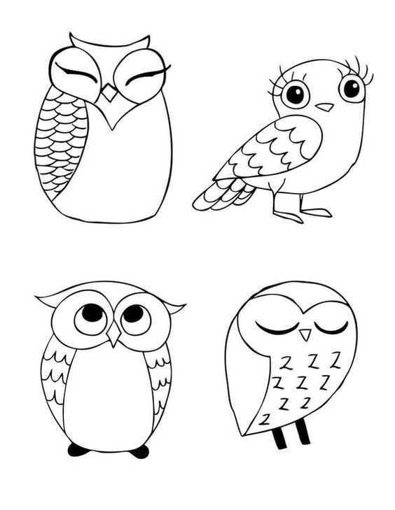 Okul öncesi Desenli Baykuşlar Boyama Sayfaları Okul öncesi