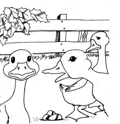 çirkin ördek Yavrusu Hikaye Kartı Boyama Sayfası Okul öncesi