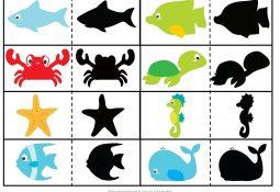 Deniz Canlıları Gölge Eşleştirme Çalışma Kartları