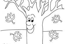 Okul öncesi Sonbahar Etkinlikleri Okul öncesi Etkinlik Faliyetleri